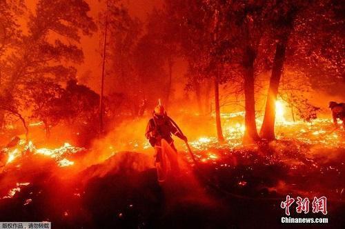 Chùm ảnh: Thảm họa cháy rừng ở California, diện tích rừng bị phá hủy bằng 10 thành phố New York Ảnh 1