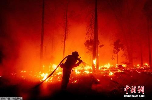 Chùm ảnh: Thảm họa cháy rừng ở California, diện tích rừng bị phá hủy bằng 10 thành phố New York Ảnh 5