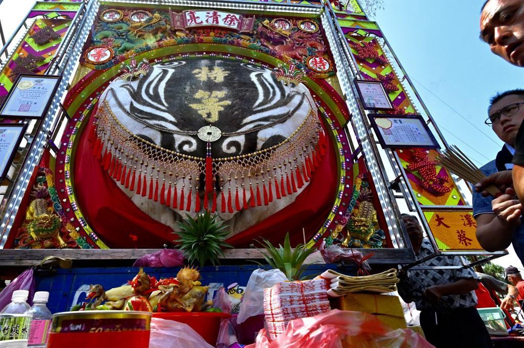 Lễ hội rước 'lợn thần' gây tranh cãi ở Đài Loan Ảnh 4