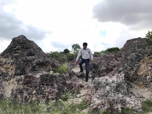 Ninh Thuận: Phát hiện bãi rạn san hộ cổ hóa thạch 'có một không hai' Ảnh 2