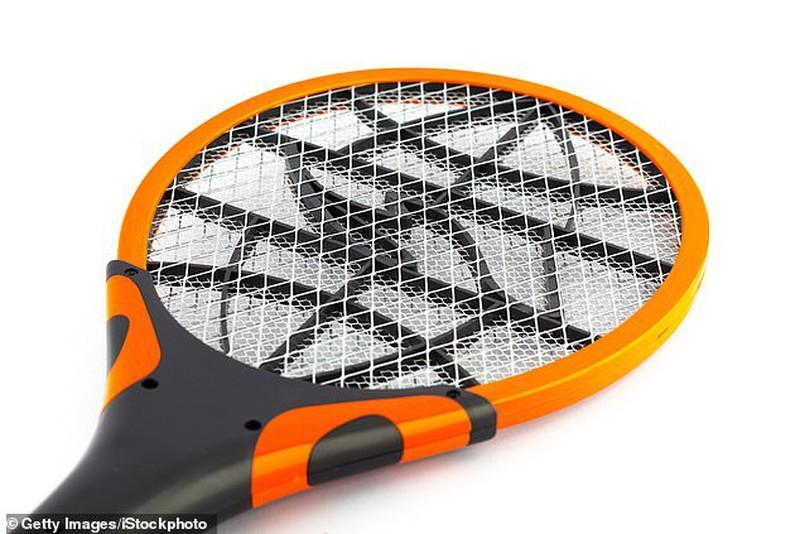 Dùng vợt bắt ruồi, không ngờ làm nổ tung căn nhà Ảnh 1