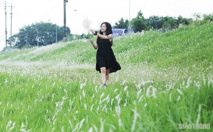 Cuối tuần, người Hà Nội nườm nượp tới chụp ảnh ở 'thiên đường' hoa cỏ tranh Ảnh 5