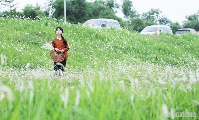 Cuối tuần, người Hà Nội nườm nượp tới chụp ảnh ở 'thiên đường' hoa cỏ tranh Ảnh 6