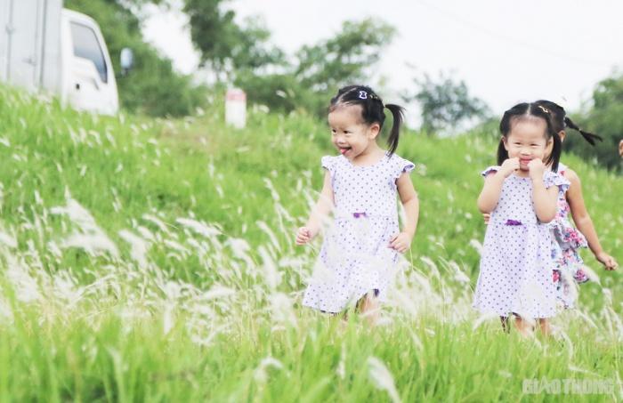 Cuối tuần, người Hà Nội nườm nượp tới chụp ảnh ở 'thiên đường' hoa cỏ tranh Ảnh 7