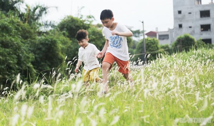 Cuối tuần, người Hà Nội nườm nượp tới chụp ảnh ở 'thiên đường' hoa cỏ tranh Ảnh 8