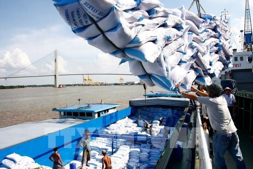 Thị trường gạo châu Á: Giá gạo 5% tấm Việt Nam lên 490-495 USD/tấn Ảnh 1