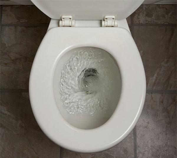 Ai ngờ chỉ vài giọt nước rửa bát cũng có thể thông bồn cầu 'sạch trơn' trong vài phút Ảnh 4