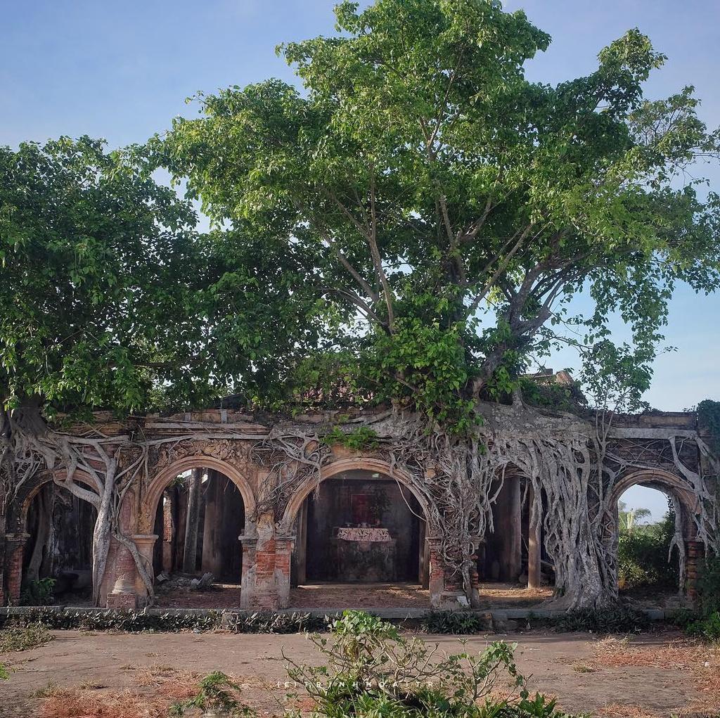 Ngôi đình hơn 100 tuổi nằm dưới bộ rễ cây bồ đề Ảnh 1