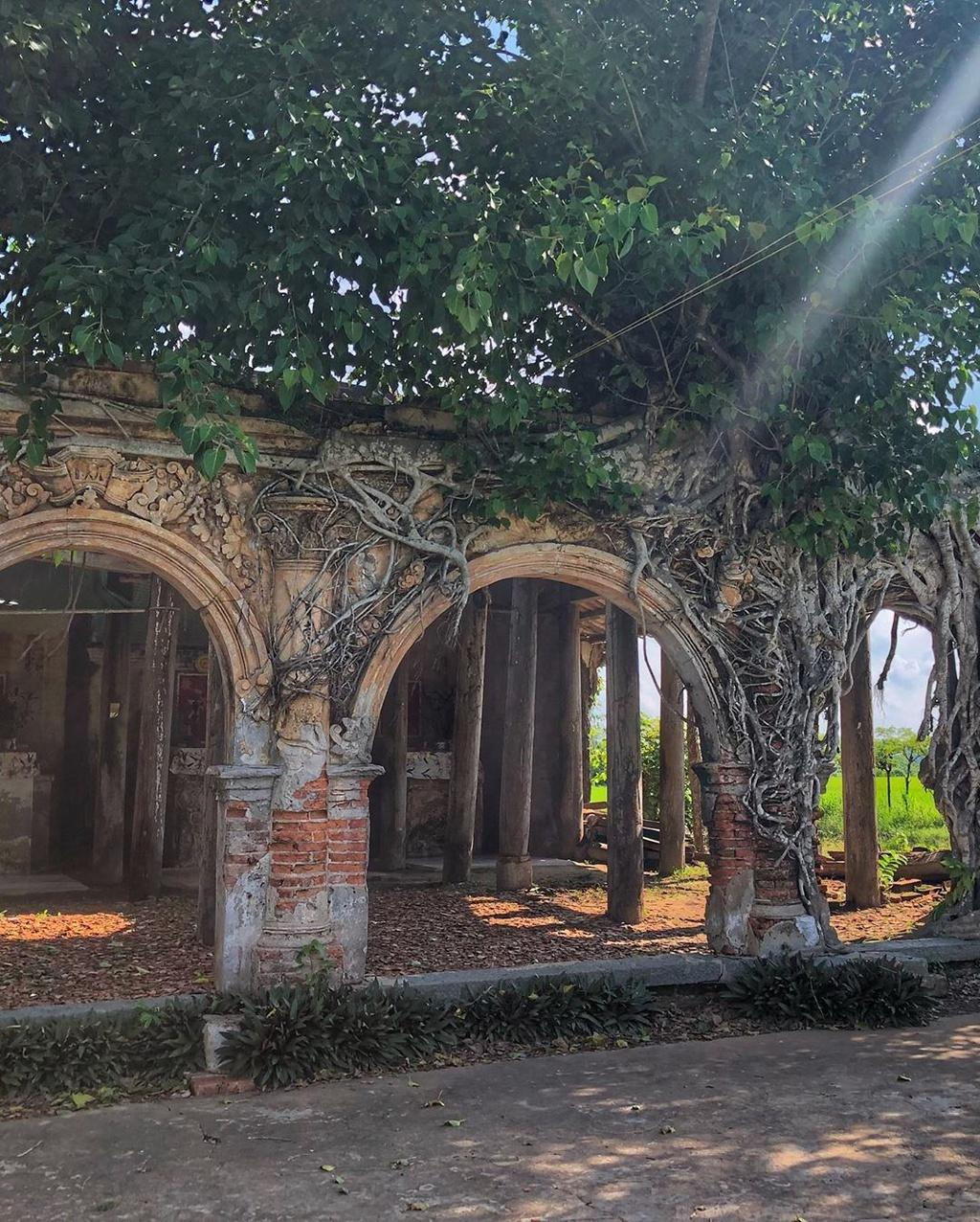 Ngôi đình hơn 100 tuổi nằm dưới bộ rễ cây bồ đề Ảnh 4
