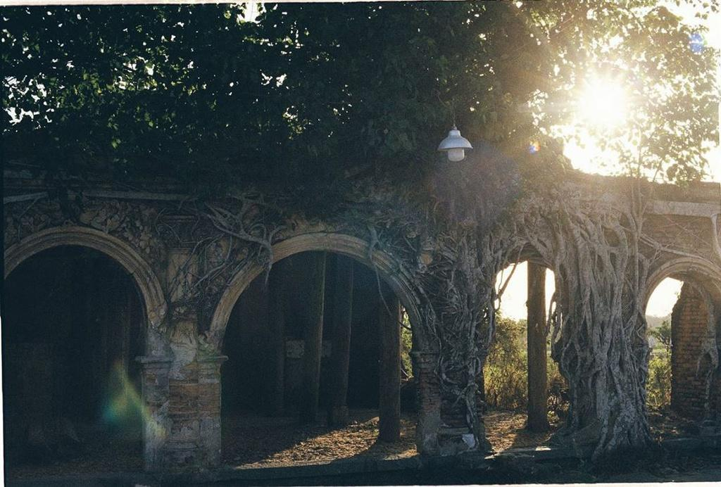 Ngôi đình hơn 100 tuổi nằm dưới bộ rễ cây bồ đề Ảnh 2