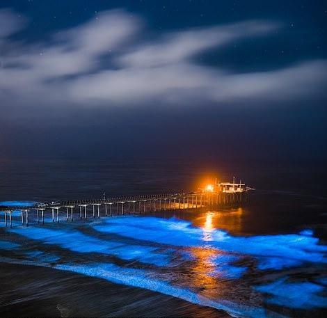 Cảnh phơi cá ở Việt Nam vào top ảnh đẹp quốc tế Ảnh 3