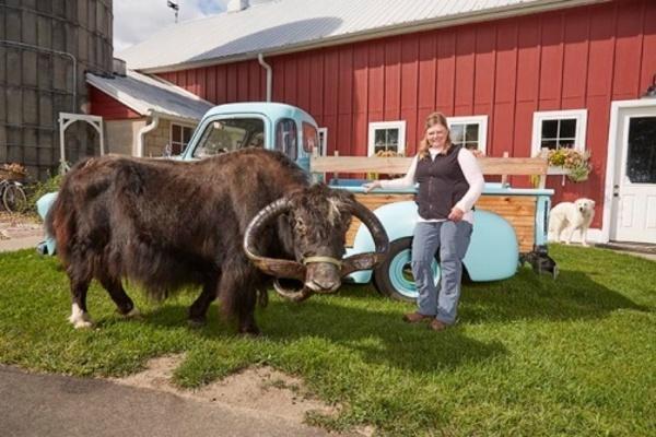 Choáng với sừng bò Tây Tạng dài nhất thế giới Ảnh 2