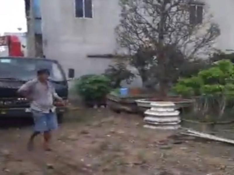 Làm rõ vụ 'tố UBND xã mượn cây kiểng không trả' Ảnh 2