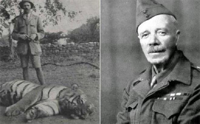 Hổ cái sát thủ đoạt mạng hơn 400 người Ảnh 1