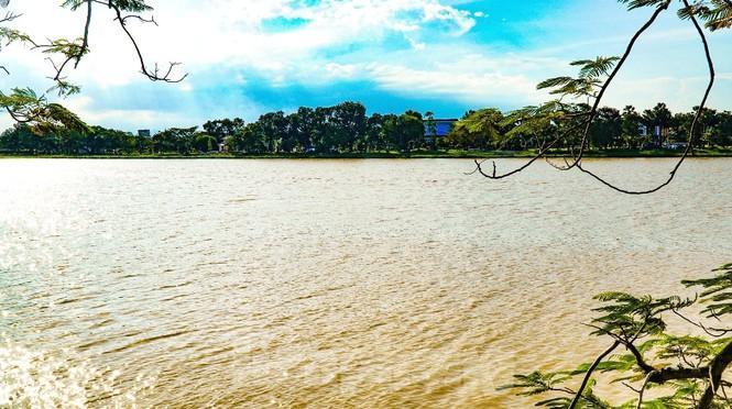 Sông Hương bất ngờ đổi màu khác thường nhiều ngày Ảnh 14