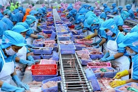 Đài Loan 'mở cửa' cho 25 cơ sở chế biến thủy sản Việt Nam xuất khẩu Ảnh 1