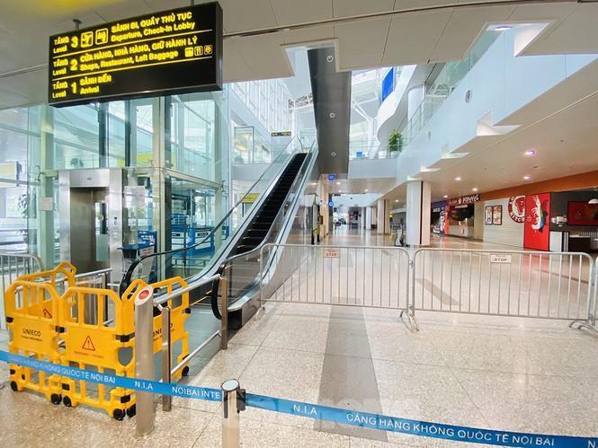 Sân bay Nội Bài sôi động trở lại sau kỳ nghỉ 'COVID -19' Ảnh 11