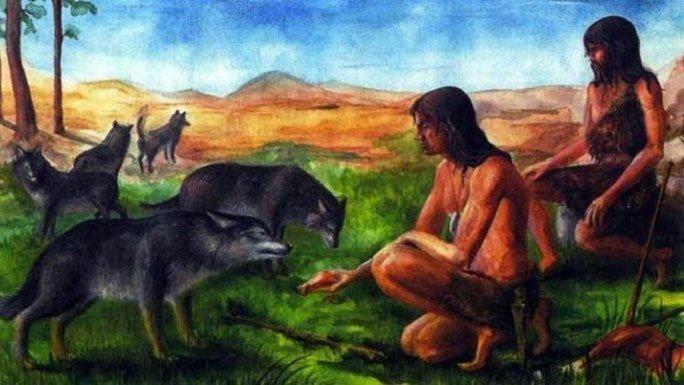 Lộ thân thế bộ hài cốt bí ẩn với những chiếc nanh nhọn trong khu mộ cổ 8.400 năm Ảnh 1