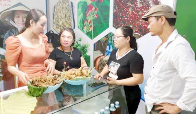 Bán 40 ký sâm Ngọc Linh, thu 3,5 tỷ đồng Ảnh 1