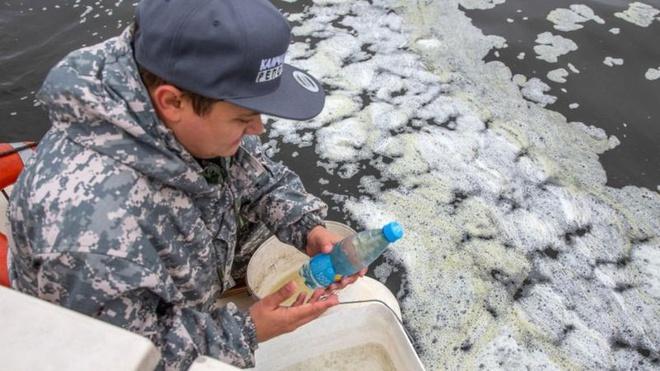 Nga điều tra tình trạng sinh vật biển chết bất thường Ảnh 2