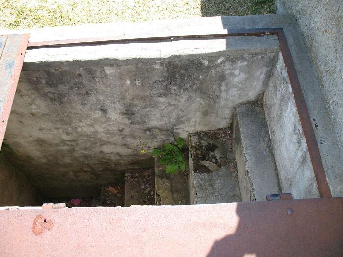 Lối nhỏ đặc biệt sát phần mộ 149 năm tuổi khiến dân tình tò mò nhưng lý do đằng sau lại khiến ai nấy bật khóc Ảnh 5