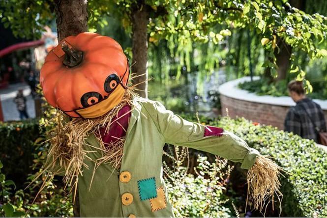 Không khí lễ hội Halloween toàn cầu: Hình nộm bí ngô cũng phải đeo khẩu trang! Ảnh 1