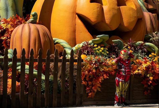 Không khí lễ hội Halloween toàn cầu: Hình nộm bí ngô cũng phải đeo khẩu trang! Ảnh 2