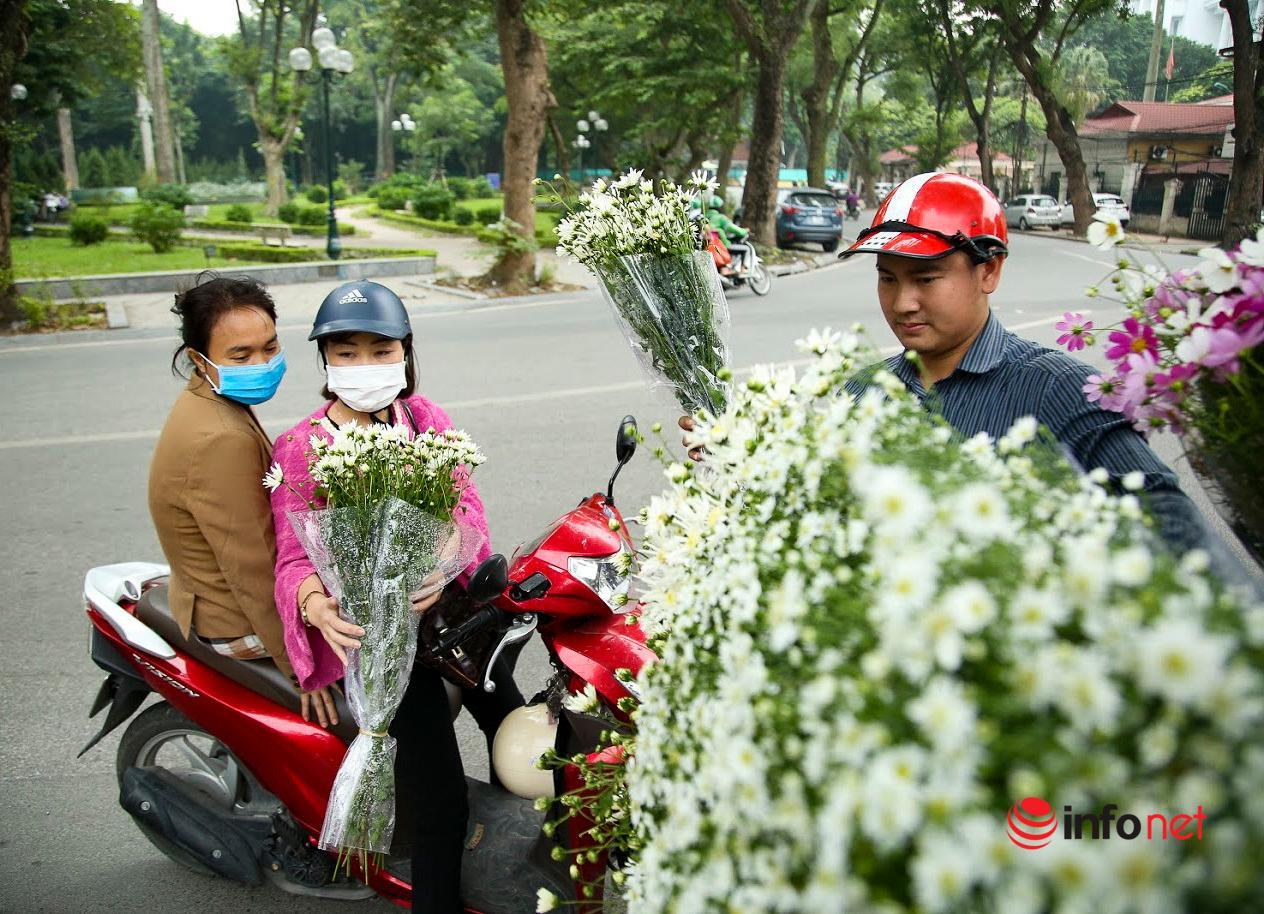 Hà Nội: Cúc họa mi tinh khôi 'xuống phố' đón đông về Ảnh 2