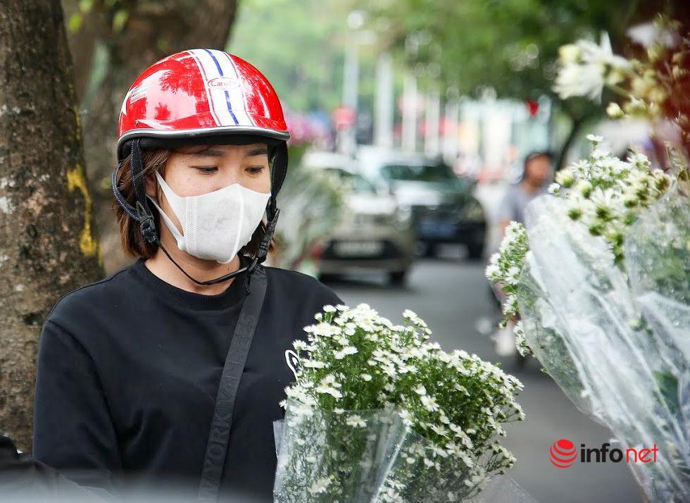 Hà Nội: Cúc họa mi tinh khôi 'xuống phố' đón đông về Ảnh 9