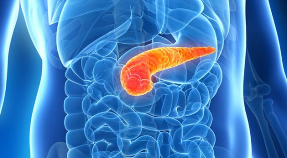viêm tuỵ cấp, tăng men tụy, tuyến tụy, viêm tụy cấp, tụy là gì, viem tuy cap,