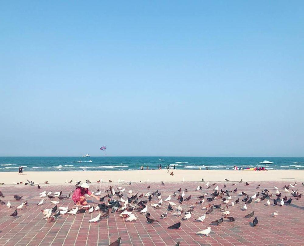 Đến đây, bạn sẽ được chiêm ngưỡng hình ảnh những đàn chim bồ câu chao lượn trên không trung rồi lại sà xuống nhẹ nhàng bên khoảng sân rộng sát kế mênh ...