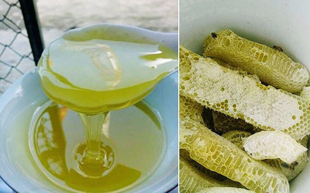 Công dụng tuyệt vời của mật ong bạc hà – đặc sản Hà Giang ít người biết -  Báo Gia Đình & Xã Hội