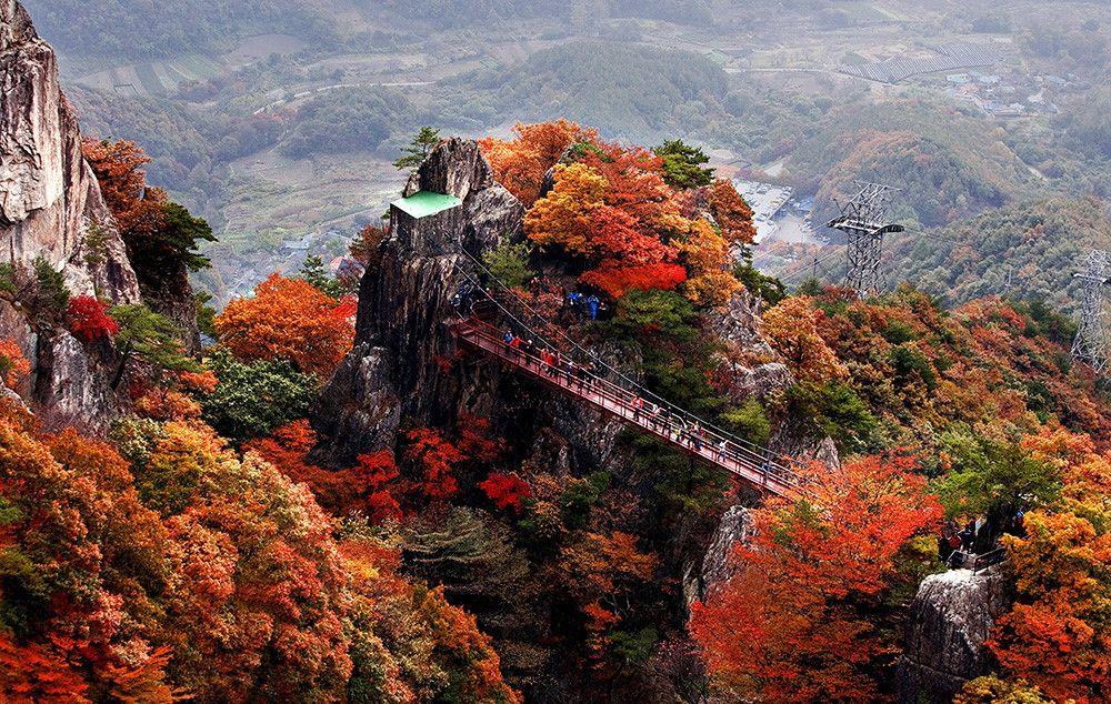 Những địa điểm Check In Với Lá Phong Tuyệt đẹp Tại Châu á