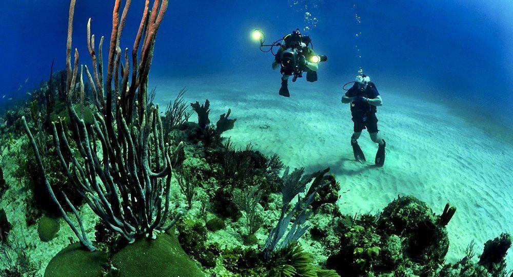 Bí ẩn những dấu chân kỳ lạ dưới biển sâu - Báo VTC News