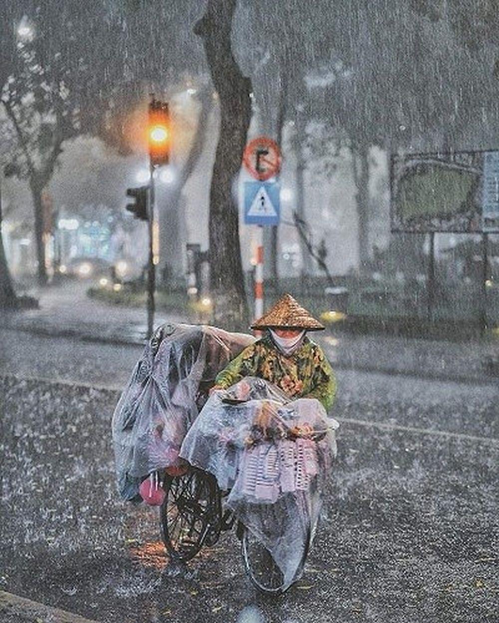 Yêu, ghét, vui, buồn, cô đơn, hạnh phúc, dữ dội, trầm mặc... Ta đều có thể bắt gặp khi mưa về trên những con phố, hàng cây quen thuộc ấy.