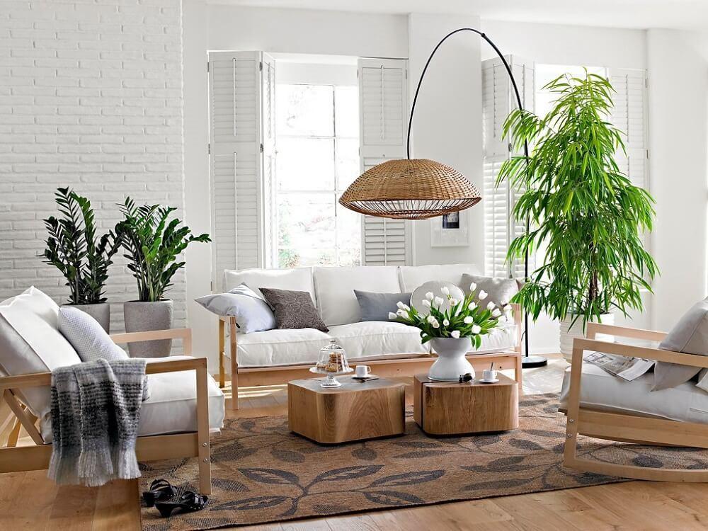 Kết quả hình ảnh cho cây cảnh trong phòng khách
