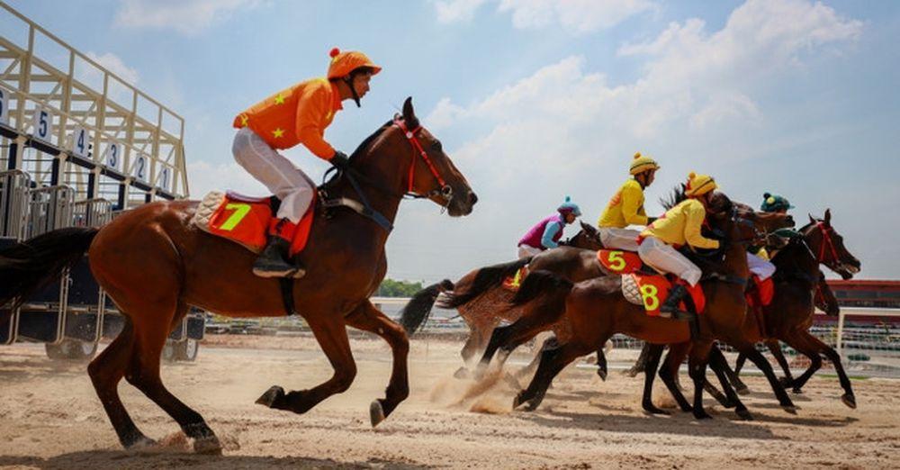 Người Việt sắp được cá cược đua ngựa ở trường đua nghìn tỷ - Báo ...