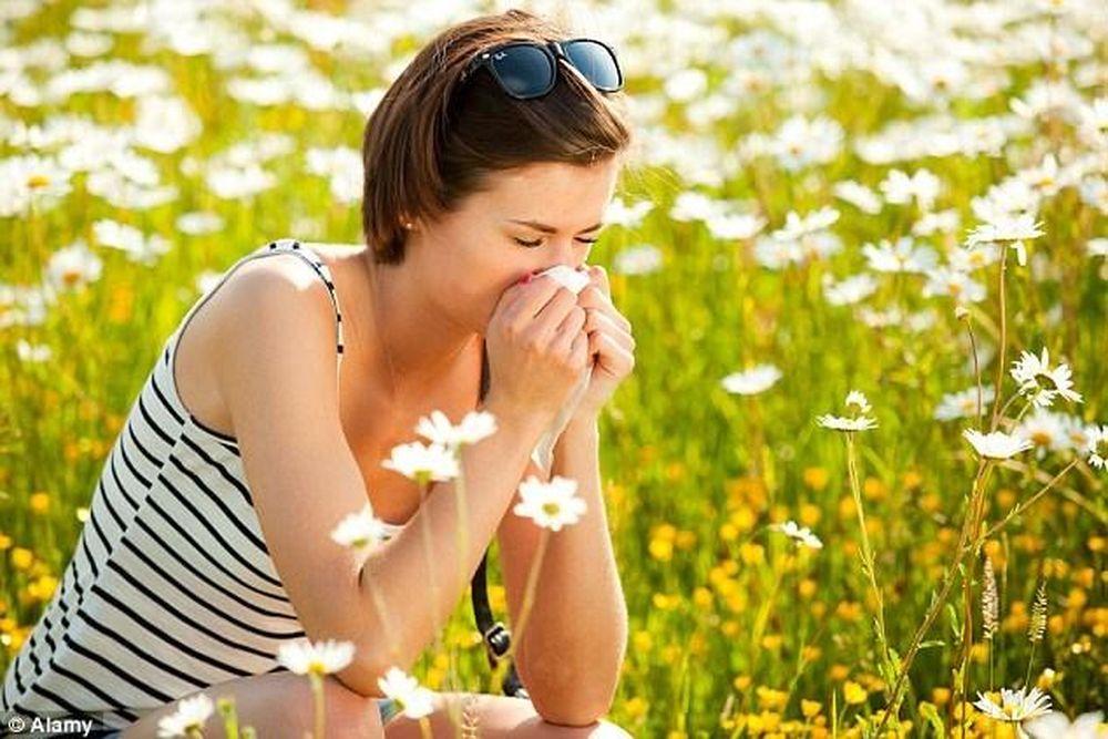 """Kết quả hình ảnh cho dị ứng với phấn hoa"""""""