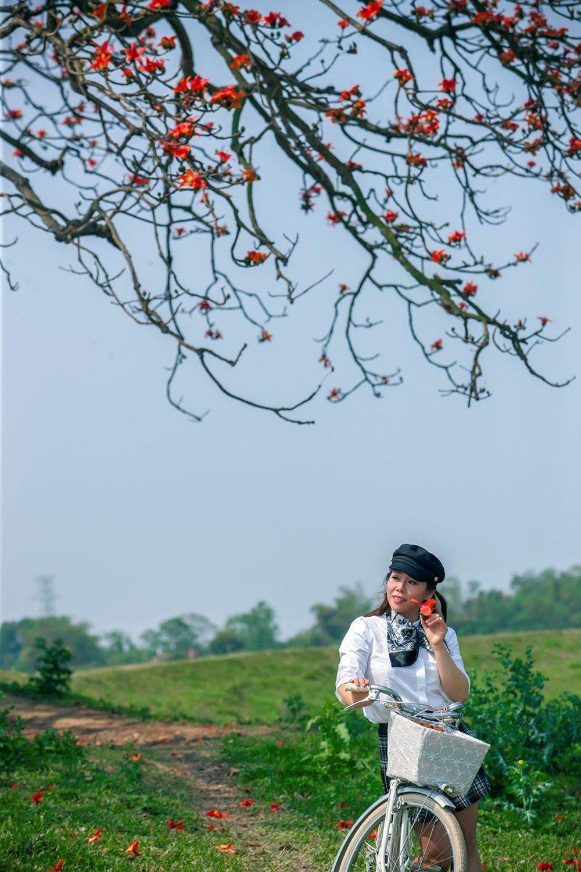 Mời bạn đọc chiêm ngưỡng hoa Gạo tháng Ba với bộ ảnh bên cây hoa Gạo cổ thụ: