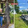 Cụ bà bắn chết cá sấu dài 3,6 mét vì dám ăn trộm thú cưng của gia đình