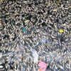 Tìm ra nguyên nhân cá chết ở kênh hào thành cổ Vinh