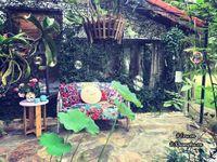 Nhà vườn thơ mộng 3000m² như resort của nữ biên tập viên VTV xinh đẹp