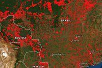 Tin cháy Nhà thờ Đức Bà Paris lan trong 3 phút, rừng Amazon cần 3 tuần