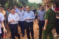 Thủ tướng sẽ cắt băng xuất hành đoàn xe vải thiều sang Trung Quốc và Nhật Bản