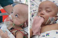 Hình ảnh mới hai bé Trúc Nhi - Diệu Nhi trong quá trình được chăm sóc đặc biệt tại bệnh viện Nhi đồng TP HCM