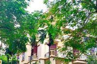 Hà Nội: Biệt thự cao cấp, homestay cho thuê giá nhà trọ, khách vẫn chê, lý do là chỗ này