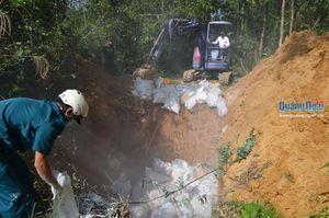 Quảng Ngãi: Tiêu hủy 3.000 con gia cầm bị nhiễm bệnh cúm A H5N6