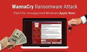 Mã độc WannaCry nguy cơ tấn công Việt Nam