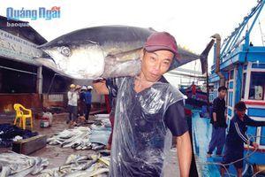 Làng câu cá ngừ đại dương