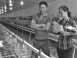 Quỹ khuyến nông Quốc Oai: Bạn đồng hành cùng nông dân